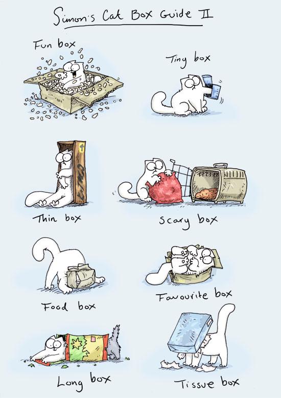 Images du jour sur les chats - Page 5 00028_10