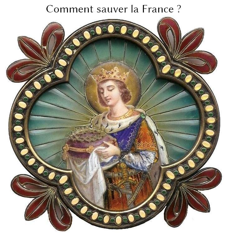 Comment sauver la France ? Commen11
