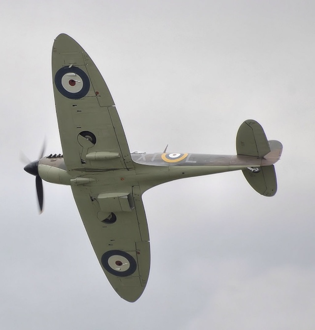 [Encyclo] Spitfire : armement & versions Spitfi19
