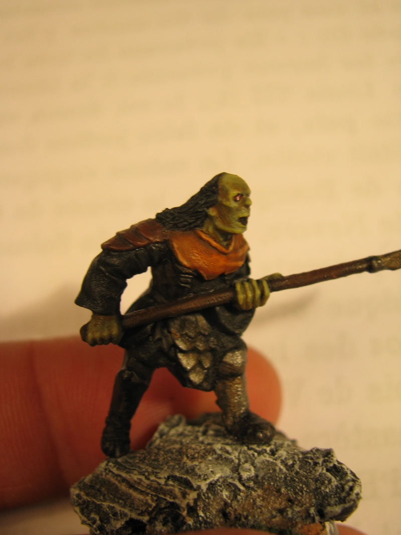 [CDA n°1] L'ost du lieutenant de Morgul [Terminé] Img_4116