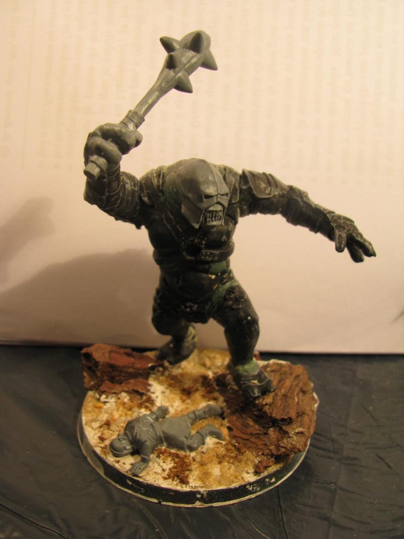 [CDA n°1] L'ost du lieutenant de Morgul [Terminé] Img_4117