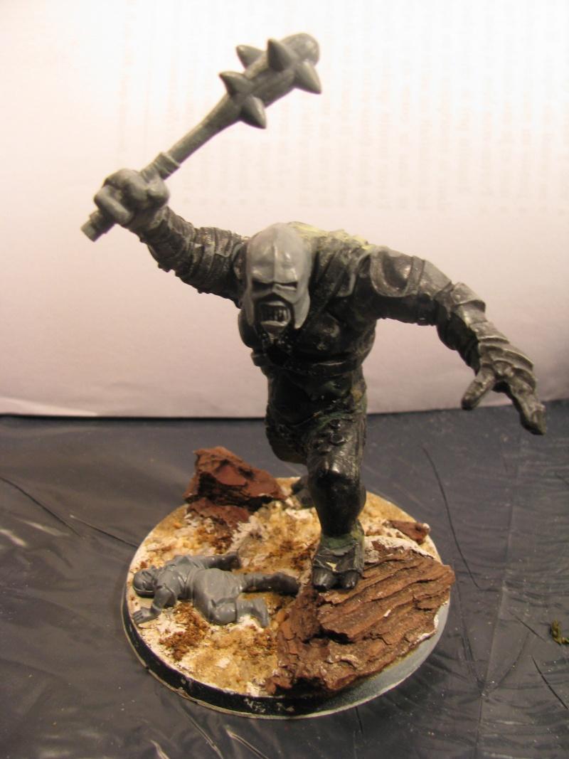 [CDA n°1] L'ost du lieutenant de Morgul [Terminé] Img_4119
