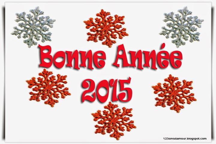 MEILLEURS VOEUX POUR 2015 Messag10