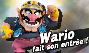 Les personnages secret (/!\ SPOILERS /!\) Warioo10