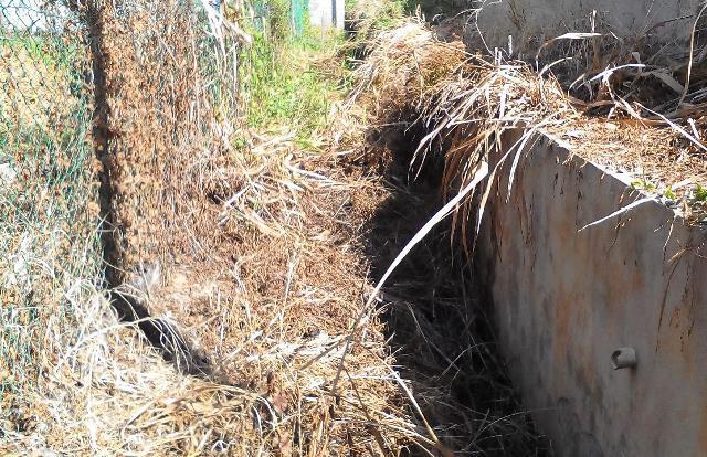 Gotong-royong membersihkan kawasan KRT Tmn Tropicana -28feb2015 Photo_45