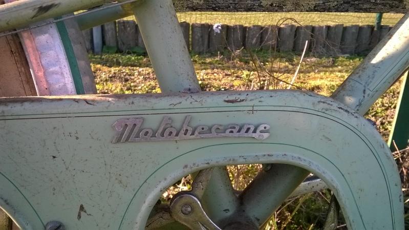 Motobécane  Wp_20114