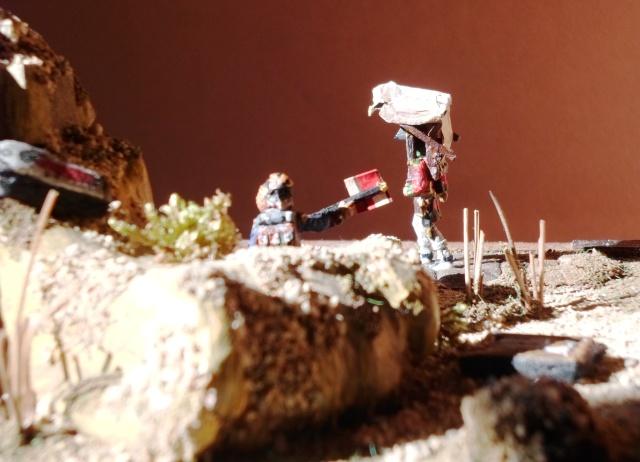 Campagne  d ' Egypte 1799 . Au 1/72  Albulm25