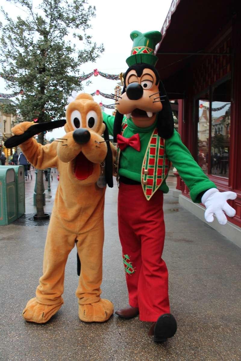 Un premier séjour magique pour le noël 2014 à Disney - Page 6 Dingo_10