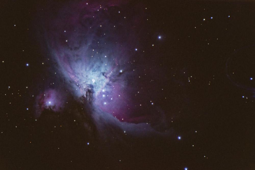 Tête de cheval : IC 434 Img_3711