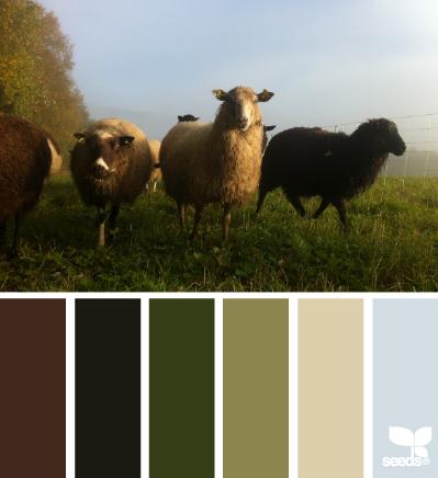 Combo de couleurs février 2015 Creatu10