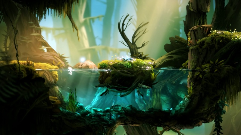 Ori & the Blind Forest Oo10