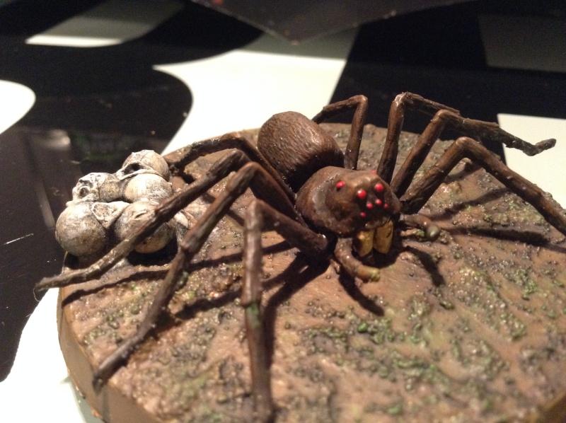 Araignées de Mirkwood Img_2829