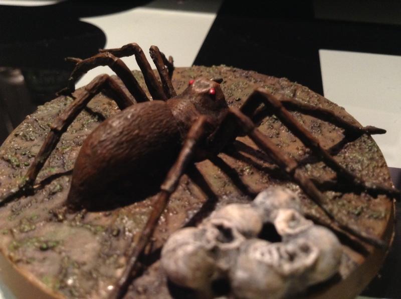 Araignées de Mirkwood Img_2831