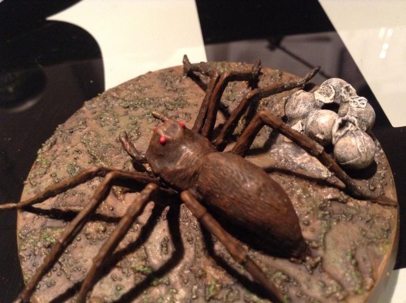Araignées de Mirkwood Img_2832