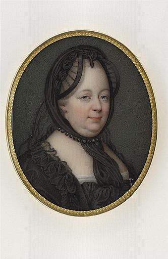 Marie-Antoinette se mêlait-elle de politique ? 10410