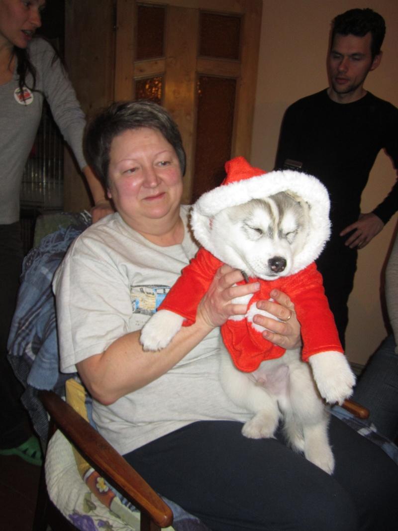 Новый Год и Рождество 2015. Карпаты. Микуличин. Img_6520