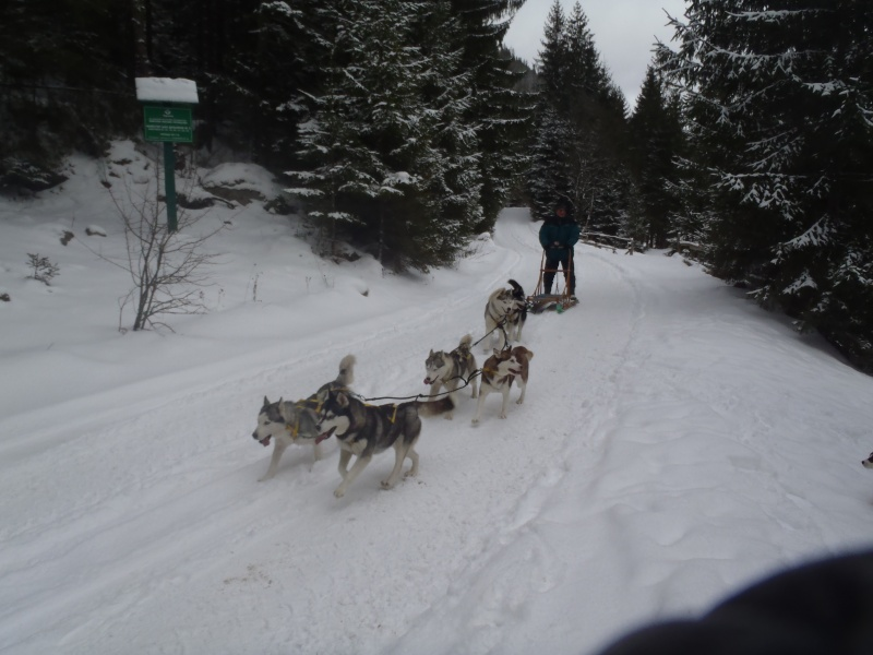 Новый Год и Рождество 2015. Карпаты. Микуличин. P1050512