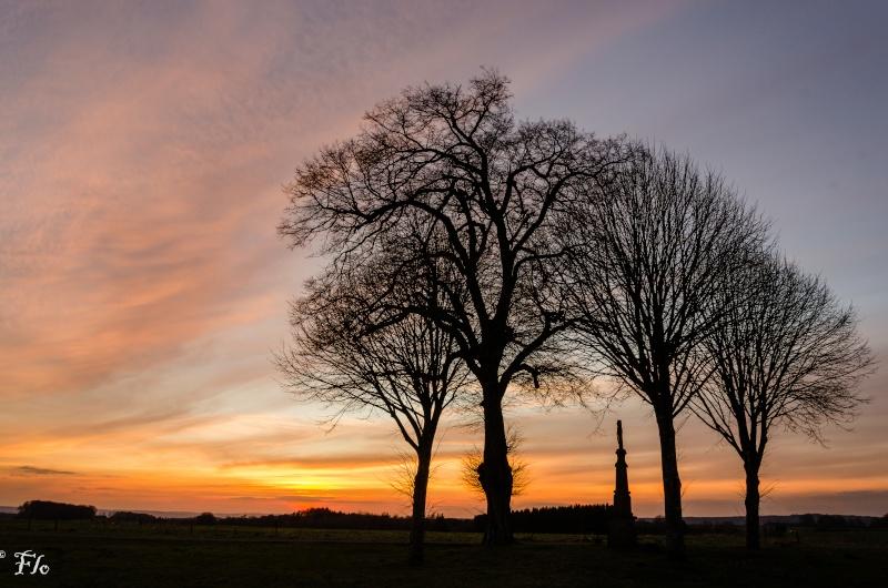 les quatre arbres 05032010
