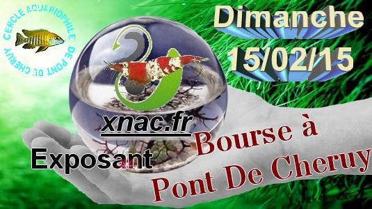 [XNAC] Bourse à Pont De Cheruy (38) le dimanche 15 février 2015 Bourse10