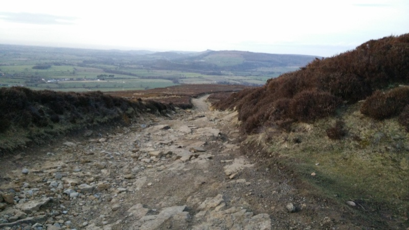 Not so epic journey to Yorkshire Img_2015