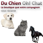 Journée des associations 21 mars 2015 Châtenoy en Bresse 53501910