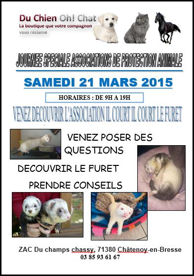 Journée des associations 21 mars 2015 Châtenoy en Bresse Captur14
