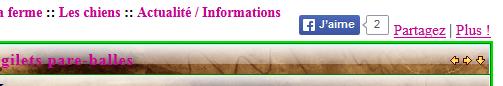 Disparition bouton j'aime sur tous les moteurs et impossibilité de partager sous Google Chrome 22-01-17