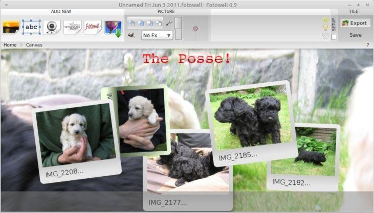 برنامج FotoWall Select22
