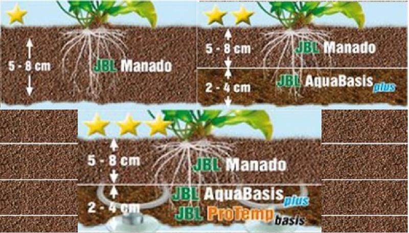 premier aquarium poisson  Manado10
