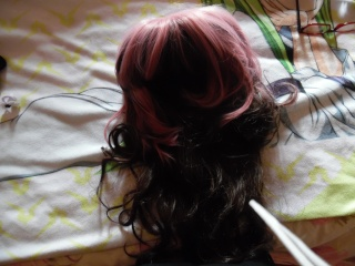 Teindre une wig Sam_0013