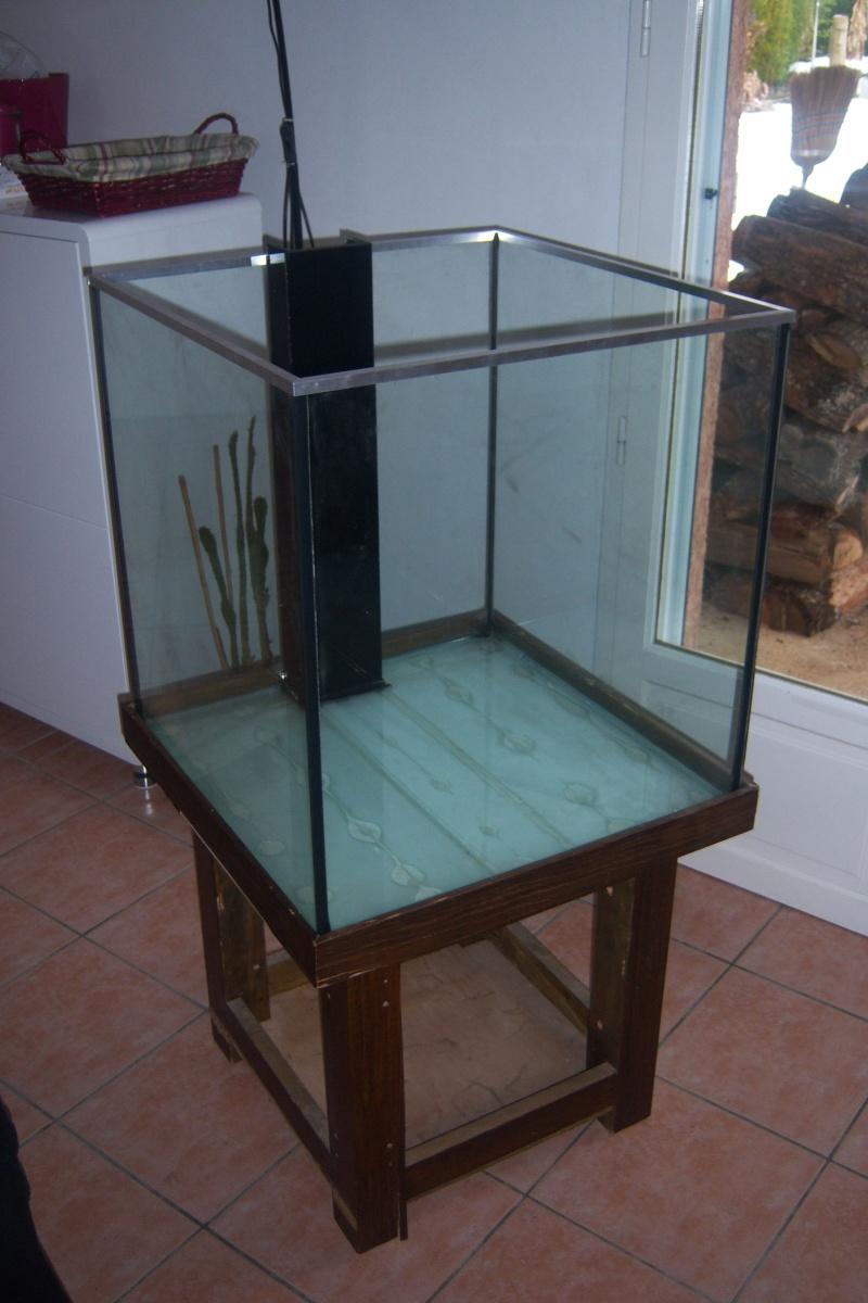 Lancement de mon aquarium cubique de 210L  11110