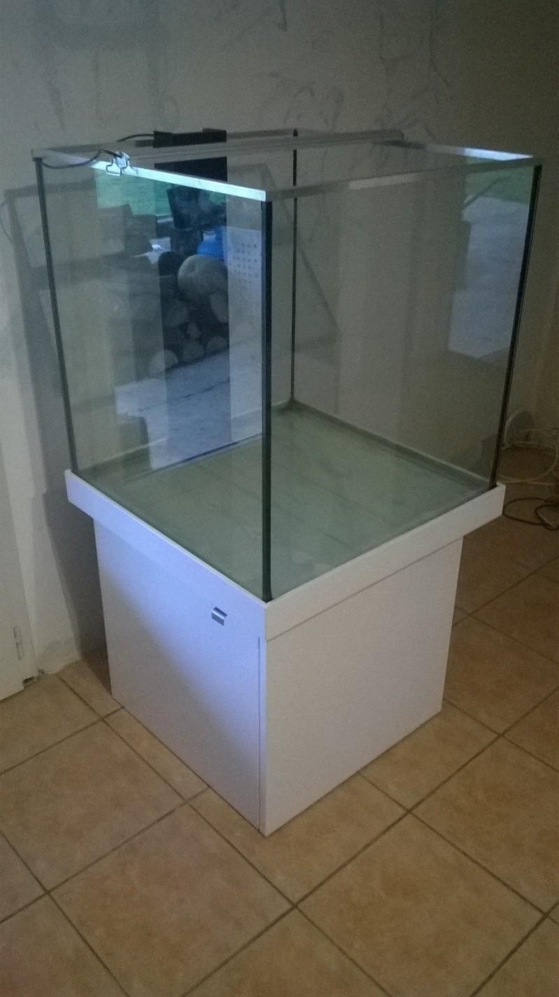 Lancement de mon aquarium cubique de 210L  Wp_20111