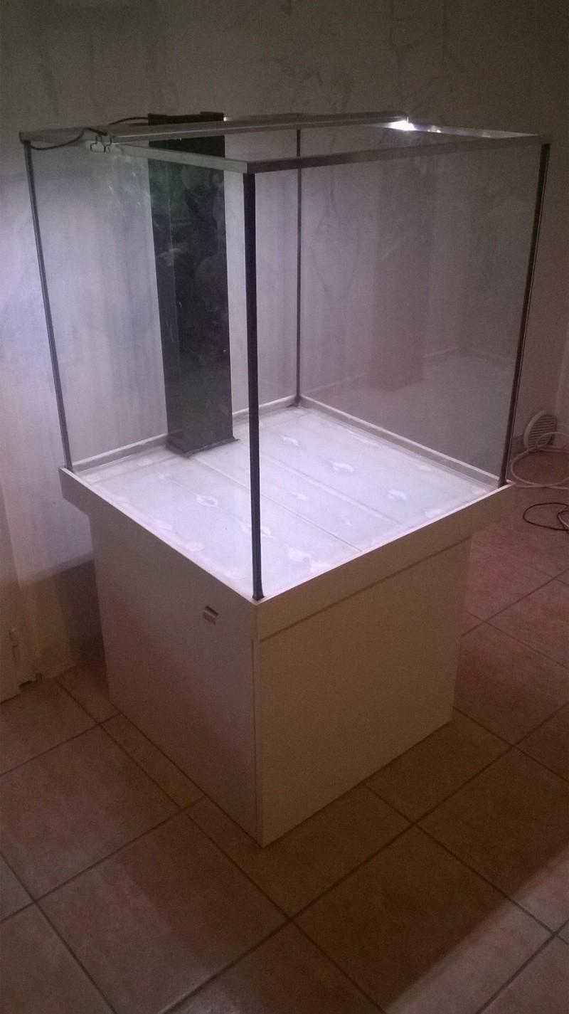 Lancement de mon aquarium cubique de 210L  Wp_20113