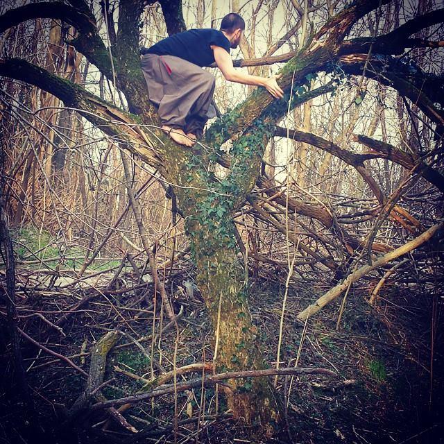 Andai nei boschi perché volevo vivere con saggezza... 10403310
