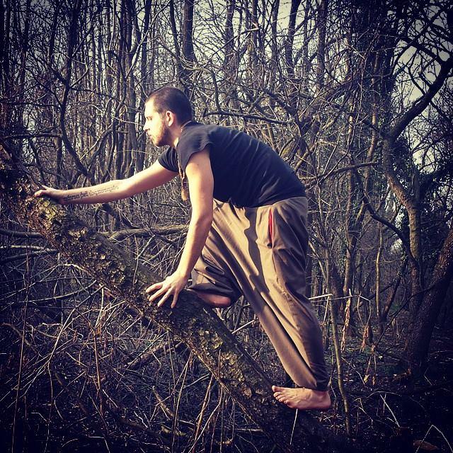 Andai nei boschi perché volevo vivere con saggezza... 10422511