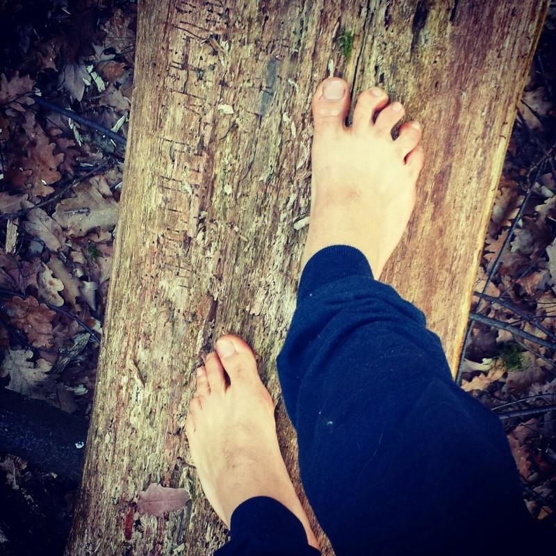Andai nei boschi perché volevo vivere con saggezza... 20150313