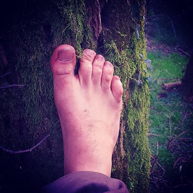 Andai nei boschi perché volevo vivere con saggezza... 52421910