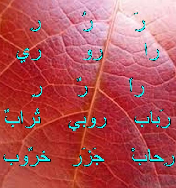 Vocabulaire arabe Gggg1011
