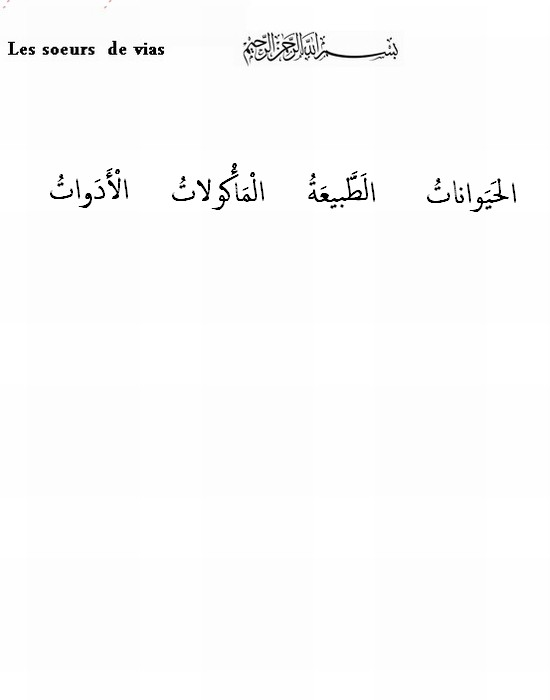 Cours de Arabia Animau10