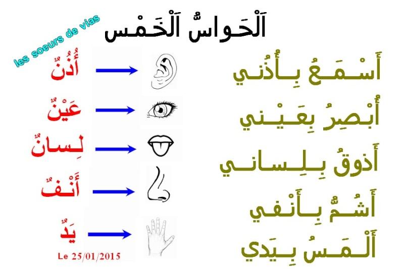 Cours de Arabia Les_ci10
