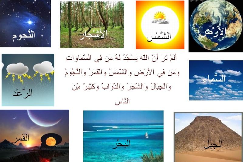 Cours de Arabia Ouuuzu10
