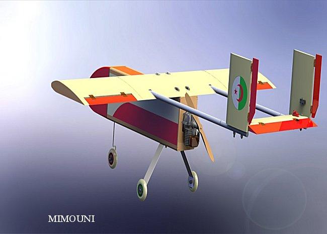 Industrie militaire Algerienne Drone_13