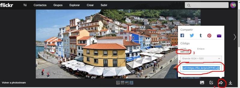Cómo subir imágenes externas Flickr11