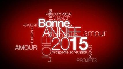 Bonne et heureuse année 2015 240_f_10