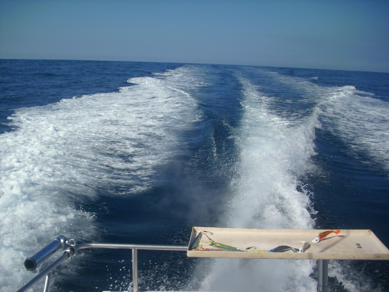 Corrico Oceânico Com Lulas Artificiais Esteir10