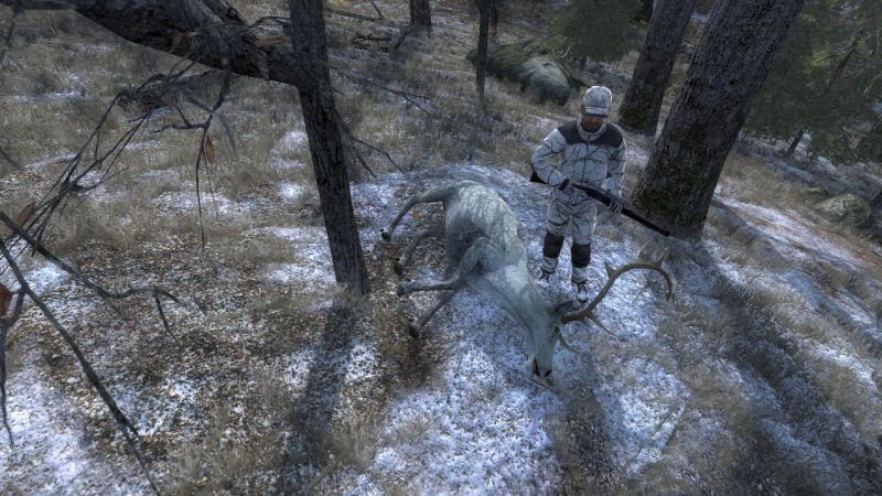 qualk sa che tipo di renna sia??? 2015-012