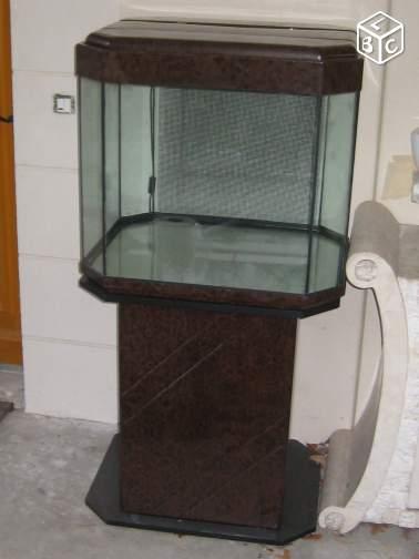 Concernant la taille de l'aquarium et  notre méthode Bdce5e12