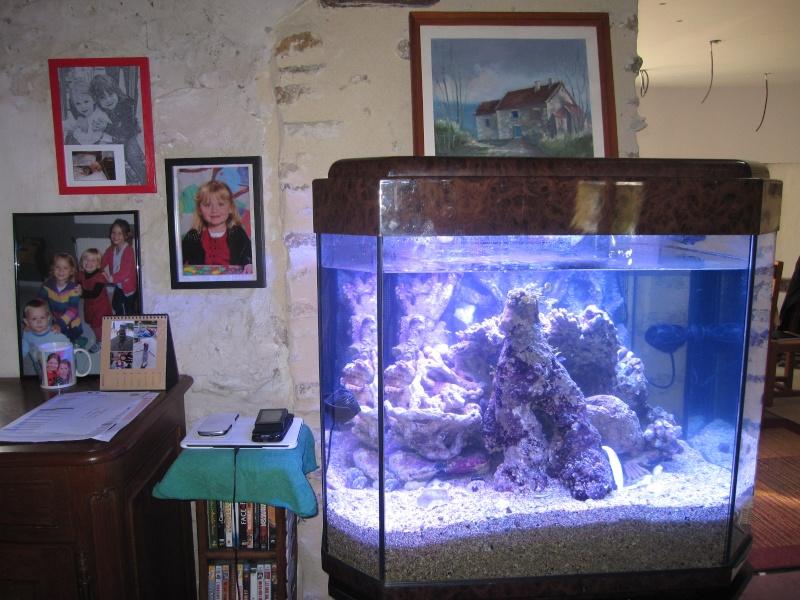 Concernant la taille de l'aquarium et  notre méthode Img_1816