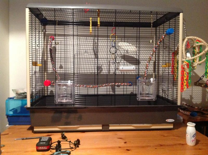 "La ""cage à Karl"" Img_1111"