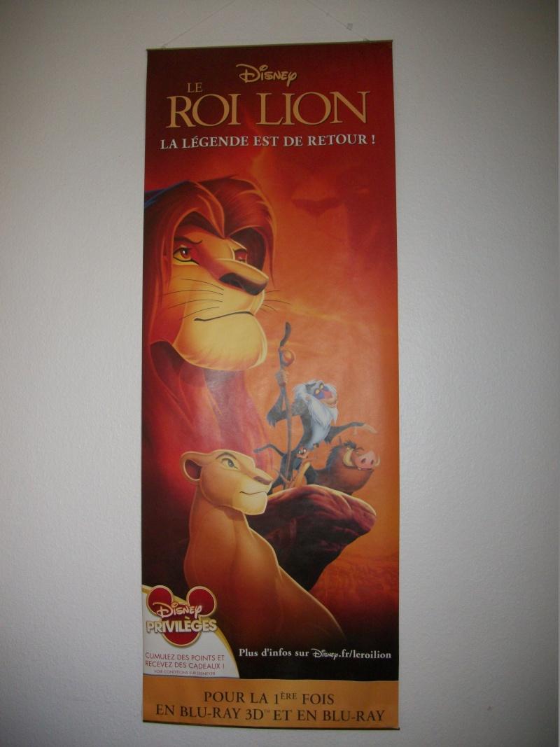 Le Roi Lion - Page 6 100_1510